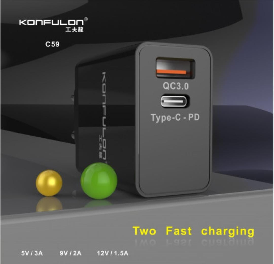 CHARGEUR C59 MICRO